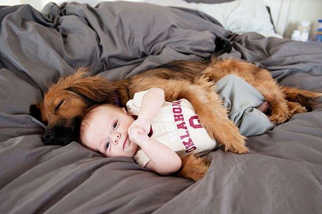 crianças-com-cães-14