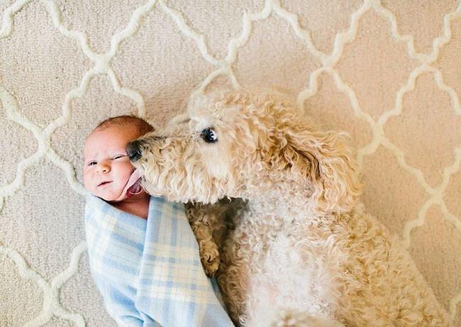 crianças-com-cães-17