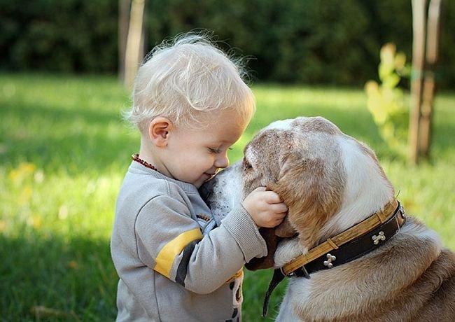 crianças-com-cães-24