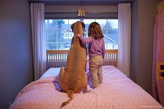crianças-com-cães-27