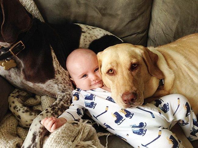 crianças-com-cães-28