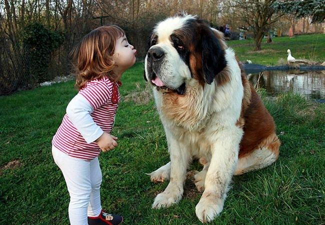 crianças-com-cães-9