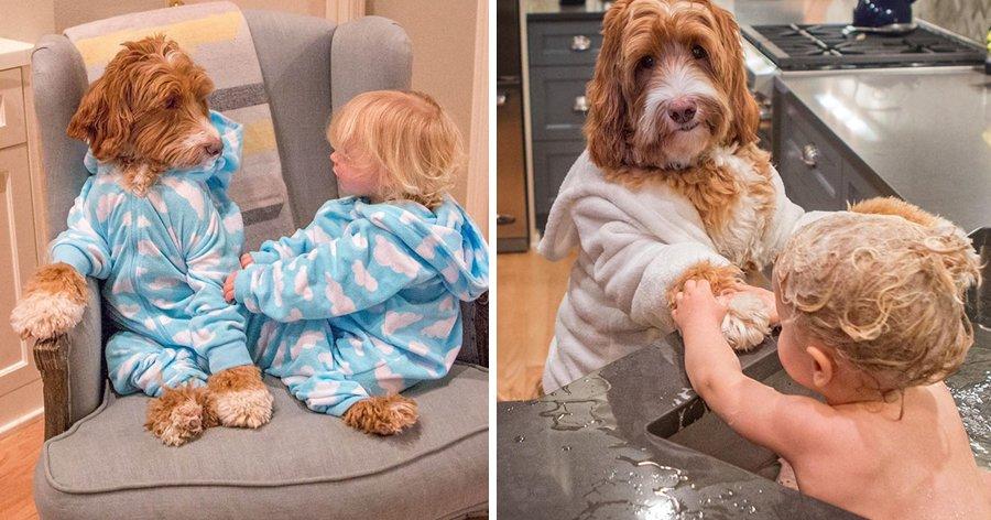 a4 12.jpg?resize=1200,630 - Melhores amigos – Fotógrafo registra o amor e amizade entre seu neto e um cão.
