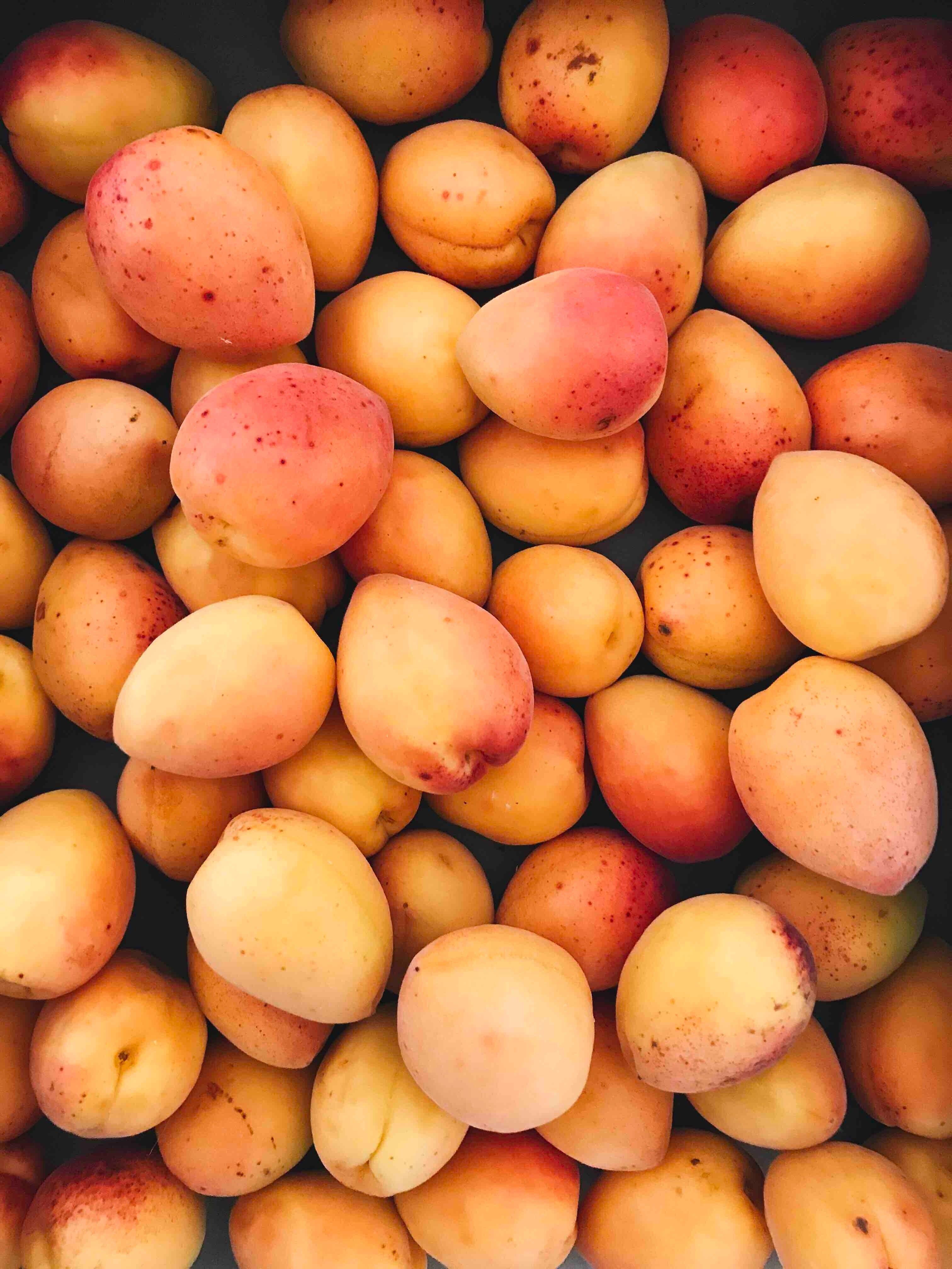 brigitte tohm 329287 unsplash.jpg?resize=366,290 - Une nouvelle norme, trop coûteuse pour être appliquée par les paysans, va empêcher la vente directe d'abricots