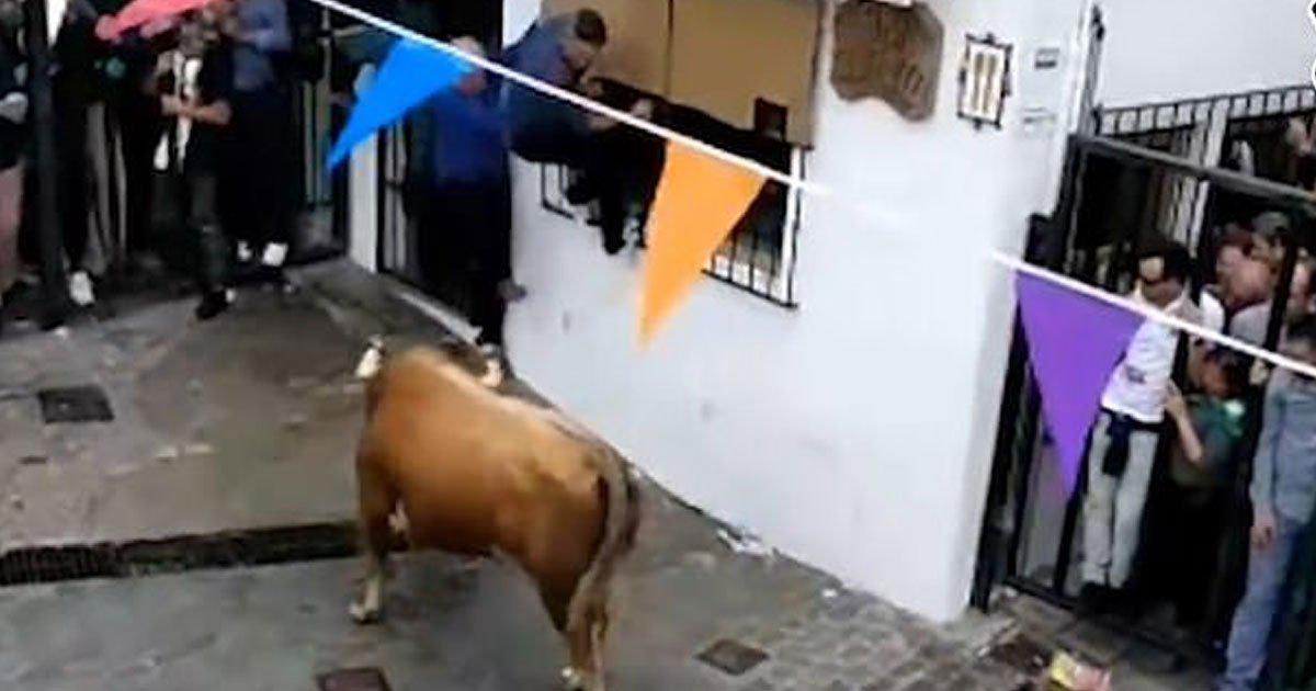 bull killed man.jpg?resize=1200,630 - Un homme de 74 ans a perdu la vie après avoir été agressé par un taureau lors d'un festival