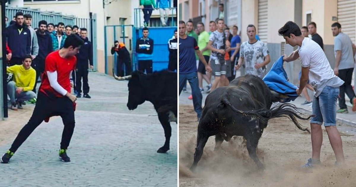 bulls.png?resize=1200,630 - Un adolescent qui a été encorné à l'aine devient la deuxième personne tuée par un taureau en une semaine dans un festival annuel
