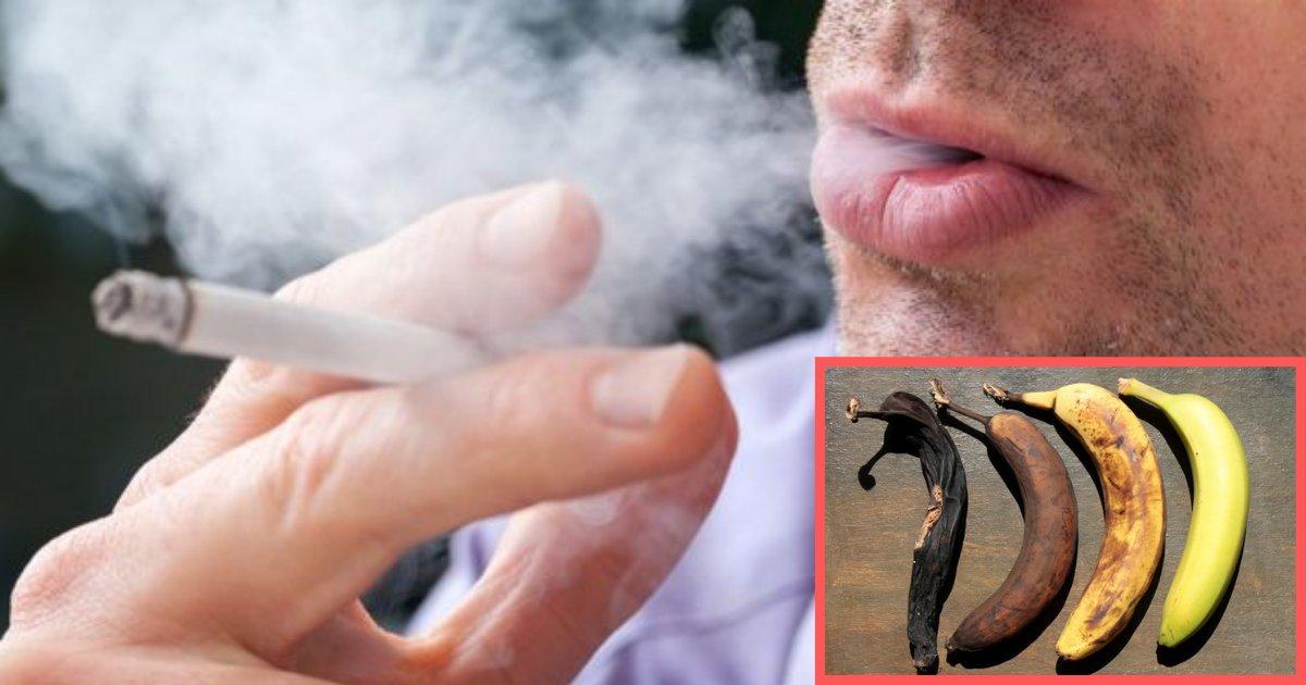 d1 8.png?resize=300,169 - Les experts avertissent les gens que le tabagisme peut réduire la taille de leur pénis