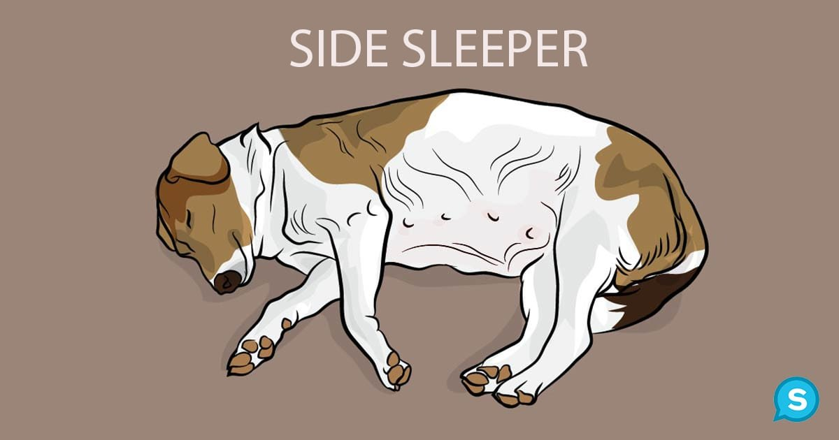 side sleeper