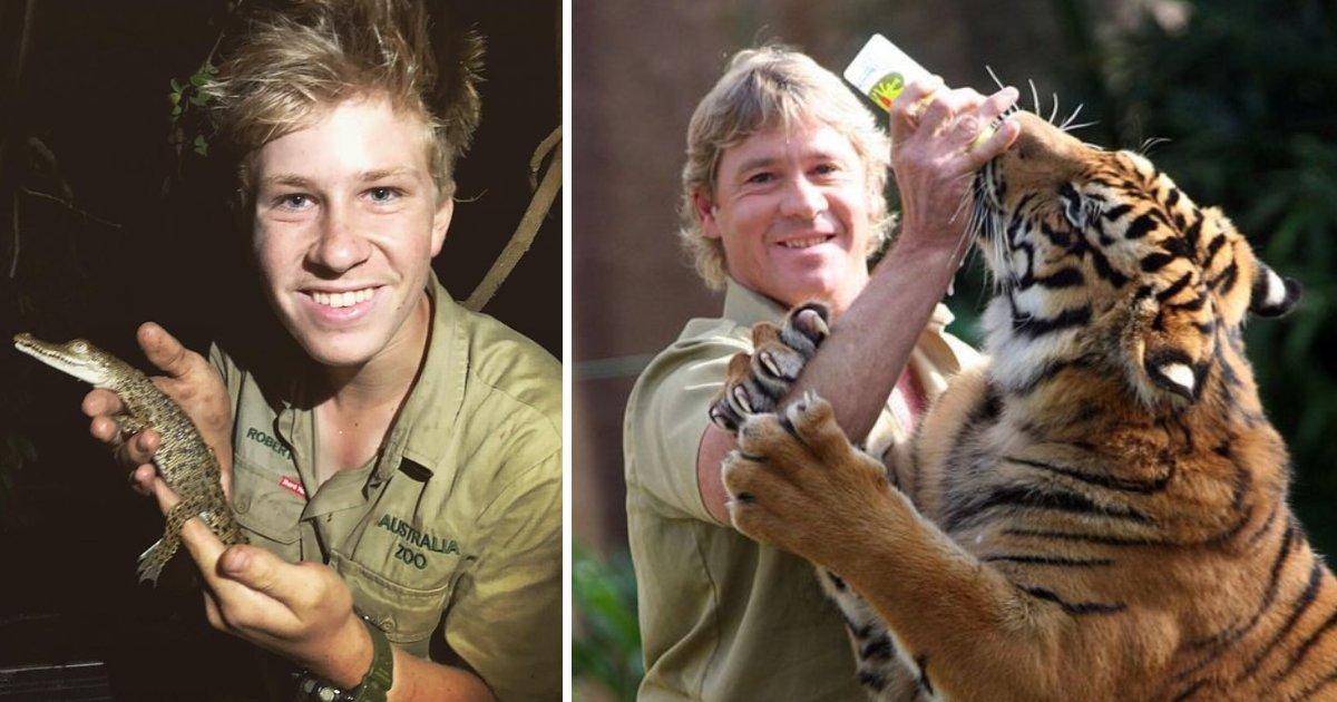 featured image 51.png?resize=300,169 - Le fils de Steve Irwin a déclaré qu'il était heureux de vivre une vie pleine de rencontres dangereuses avec des animaux sauvages