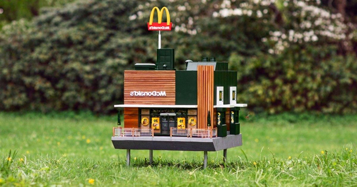 mchive tiny mcdonalds.jpg?resize=412,232 - Le plus petit restaurant McDonald's au monde, McHive, est maintenant ouvert aux abeilles en Suède