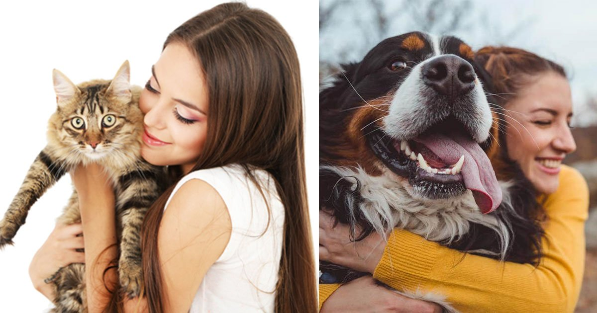 new study found cat owner are smarter than dog owners.jpg?resize=1200,630 - Cat Owners May Be Smarter Than Dog Owners According To New Study