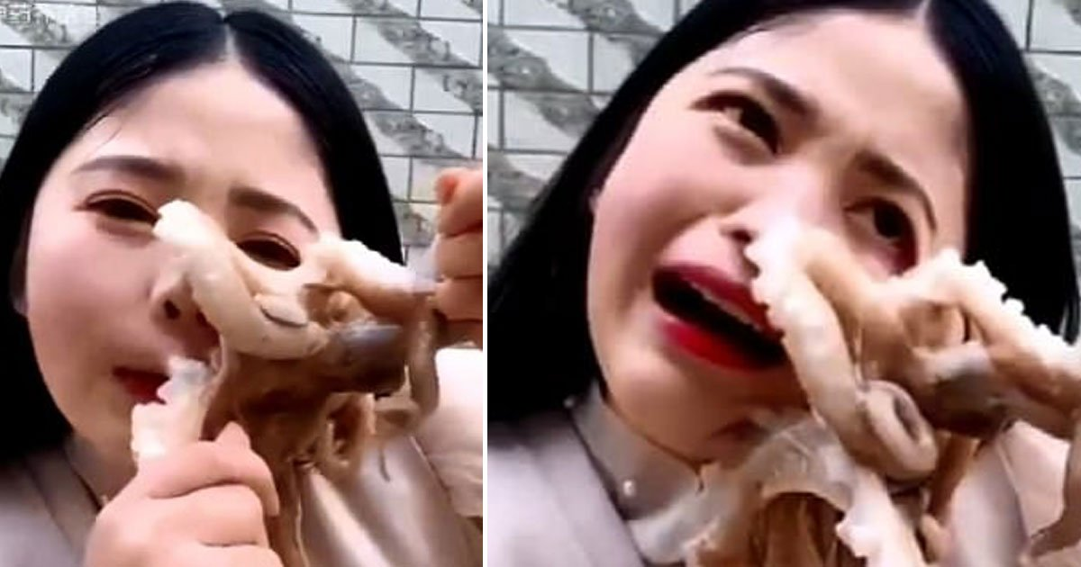 octopus sucked blogger face.jpg?resize=412,232 - Octopus Sucked Onto Blogger's Face After She Tried To Eat It Alive
