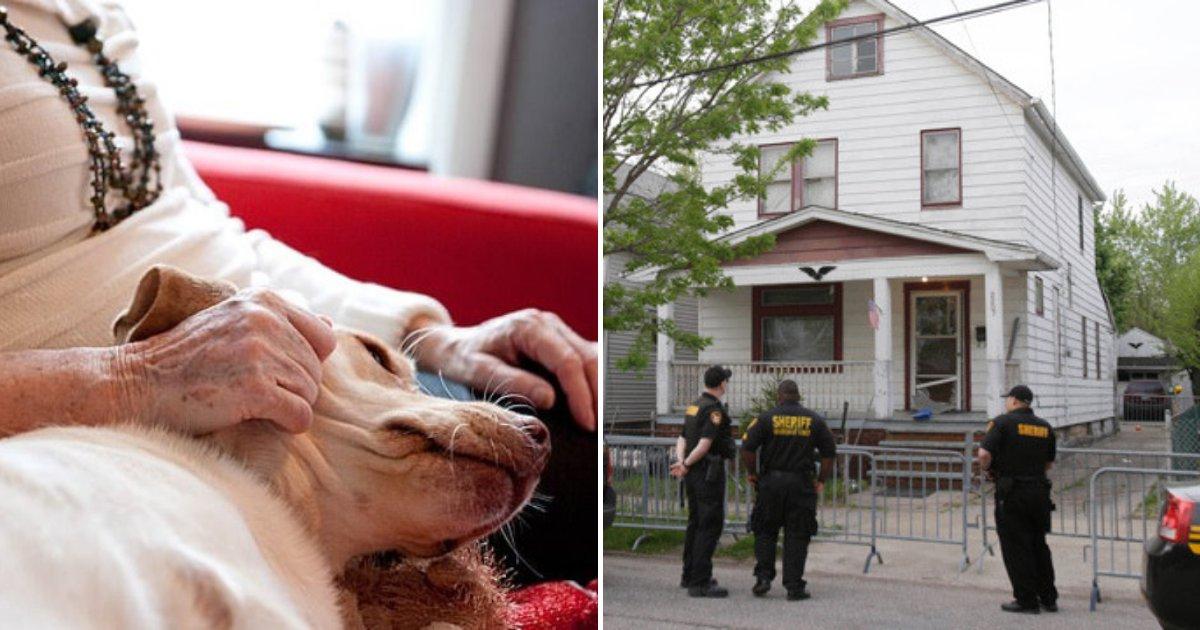 police2.png?resize=412,232 - Un adolescent a fait irruption au domicile d'une femme de 80 ans et a poignardé son petit chien