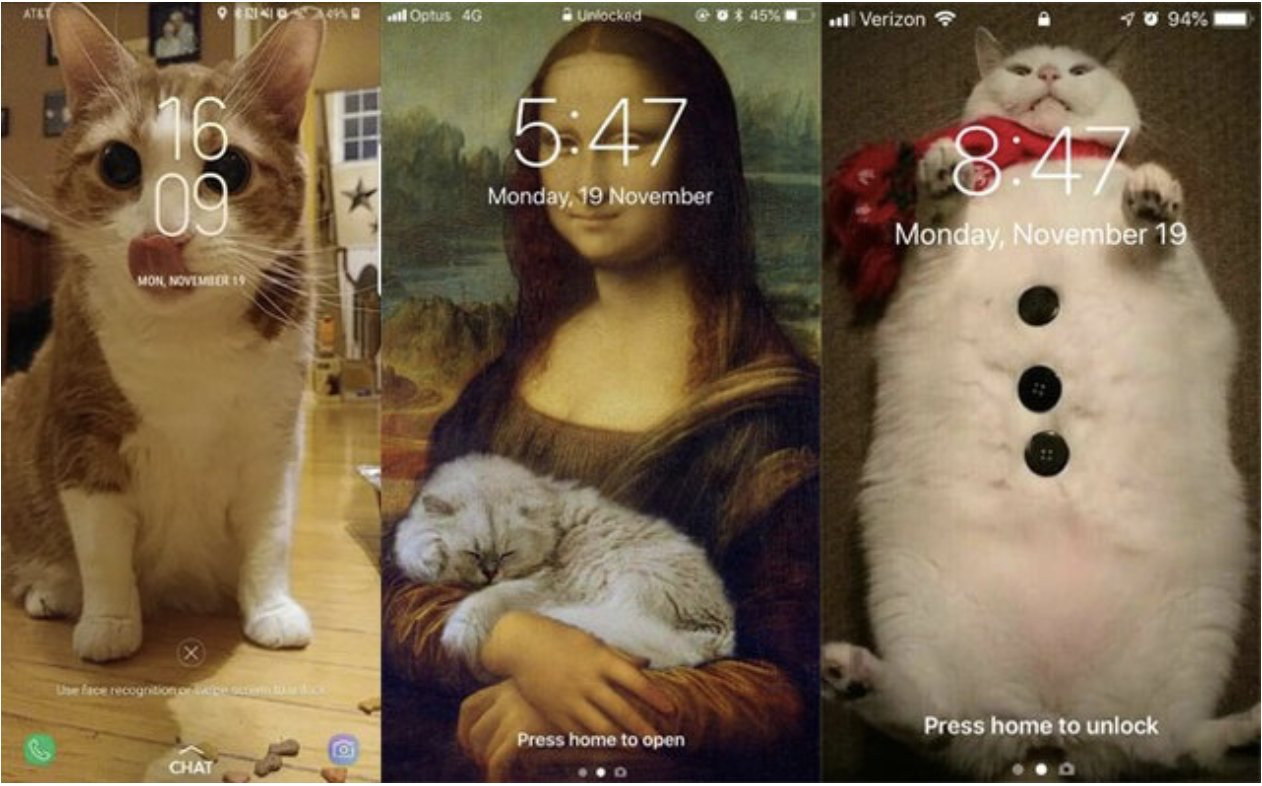 screen shot 2019 05 12 at 9 00 53 am.png?resize=1200,630 - 28 Best Cat Lock Screens That Will Make You Turn Your Phone On