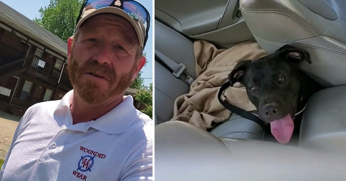 sdfsfds.jpg?resize=412,232 - This Army Veteran Saved a Puppy's Life Who was Left in The Car on This Blazing Hot Day