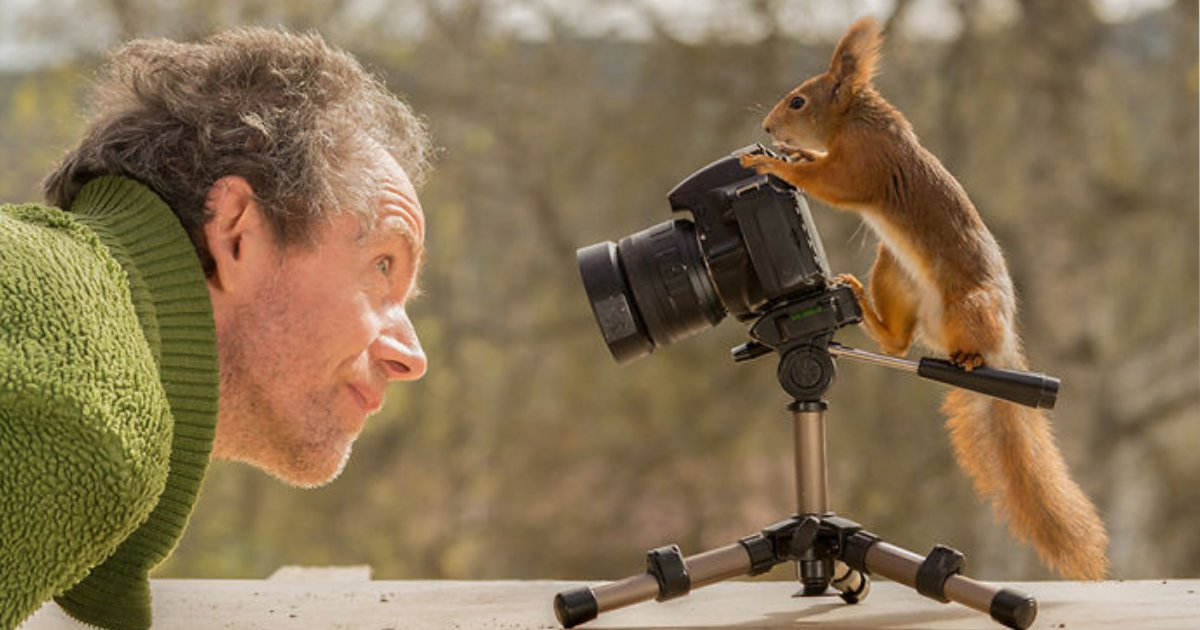 squirrels photos.png?resize=1200,630 - 25+ Amazing Photos Of Red Squirrels From A Photographer Who Followed Them For Six Years