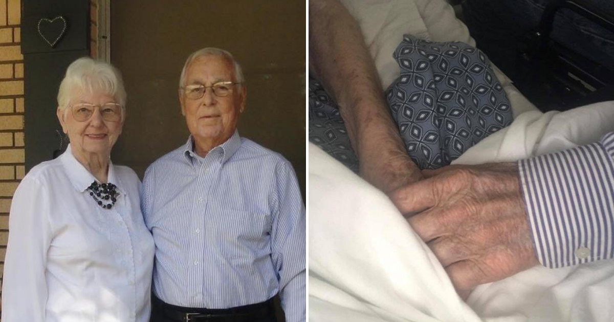 tom6.png?resize=1200,630 - Couple Married For More Than 60 Years Passed Away Only 90 Minutes Apart While Holding Hands