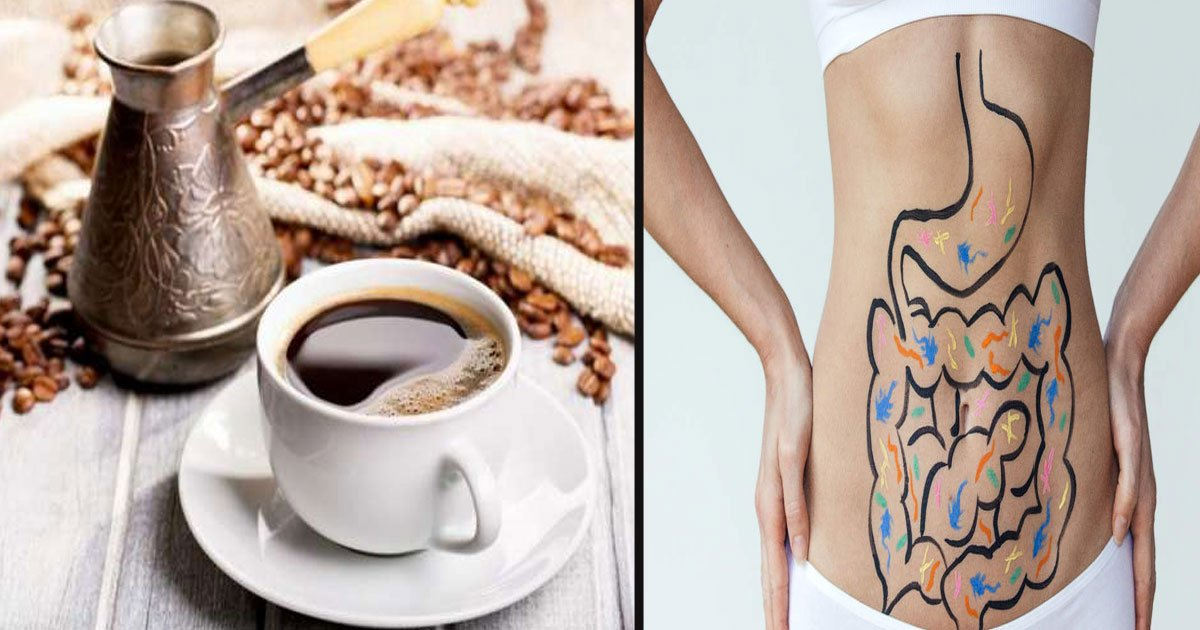 untitled 1 71.jpg?resize=1200,630 - Scientists Finally Revealed Why Coffee Makes Us Poop