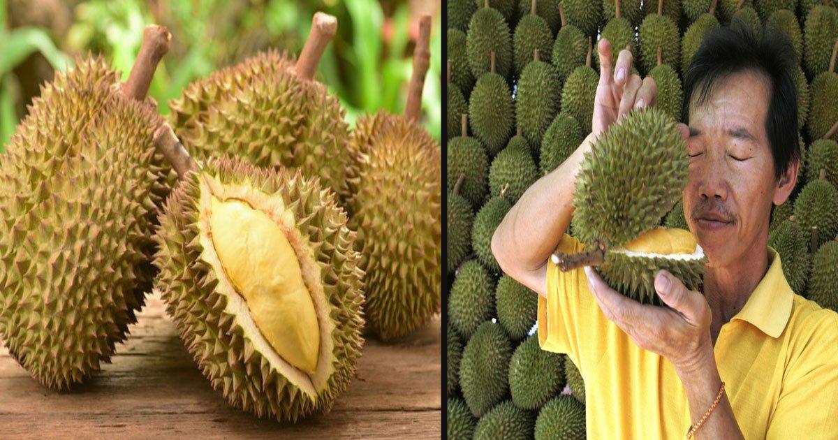 untitled 1 83.jpg?resize=1200,630 - 5 avantages pour la santé de manger le roi des fruits: Le Durian