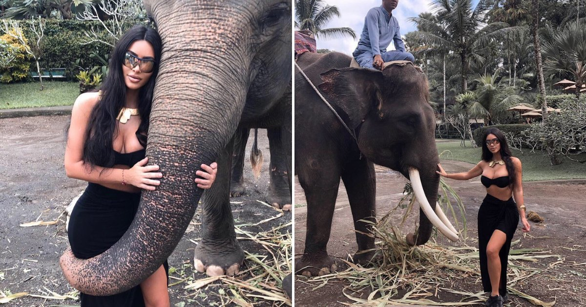 untitled design 13.png?resize=412,232 - Kim Kardashian Slammed For Riding Elephants In An Elephant 'Sanctuary'