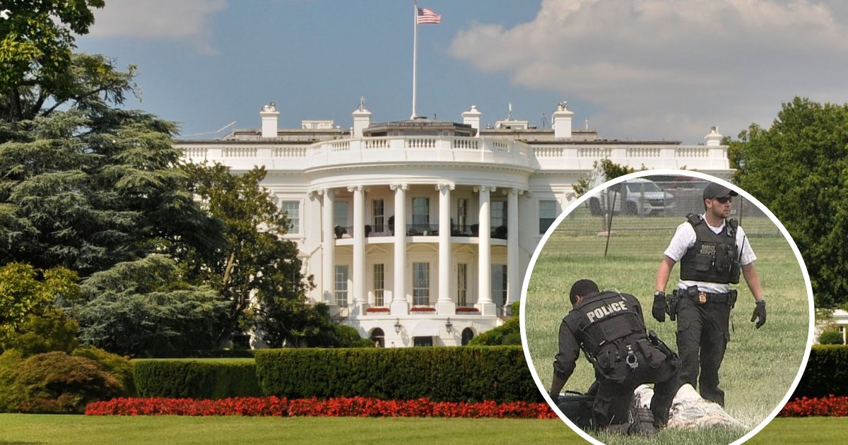 untitled design 48 1.png?resize=1200,630 - Man Set Himself On Fire And Casually Walked Around The White House