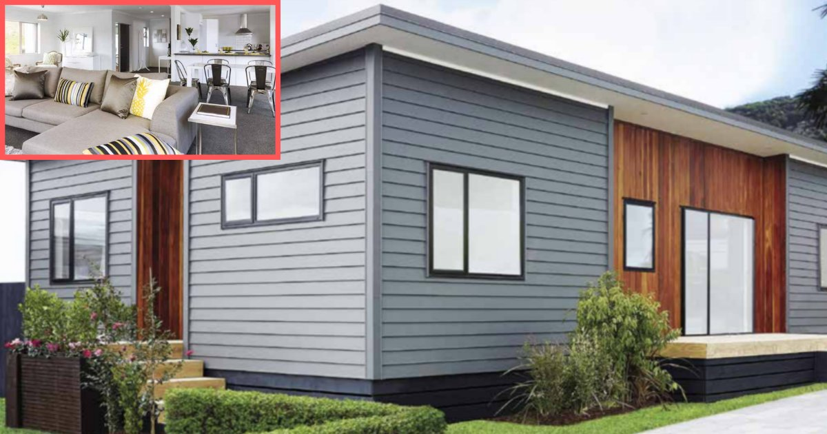y1 11.png?resize=1200,630 - There Is A House Available In New Zealand for Less Than $100,000