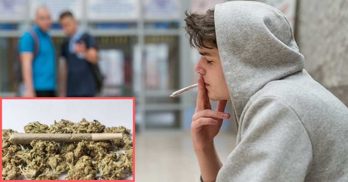 y2 15.png?resize=412,232 - Cannabis Can Leave You 3 Years Behind Your Classmates, BEWARE