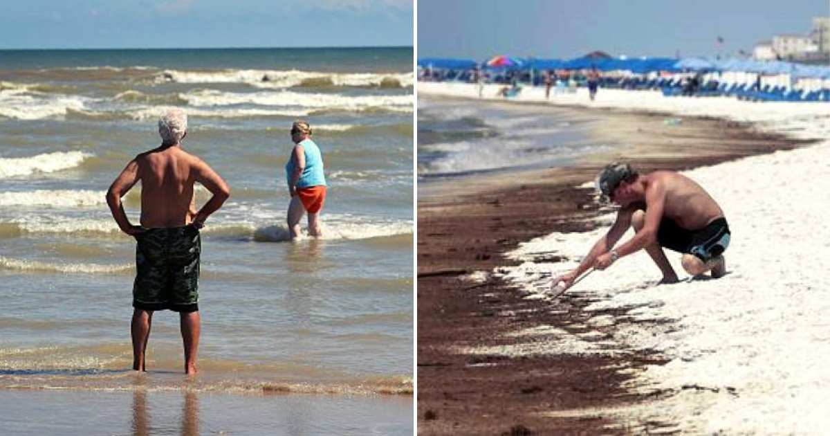 beach.png?resize=1200,630 - Flesh-Eating Bacteria Reached US Beaches Due To Increasingly Warm Water Temperatures