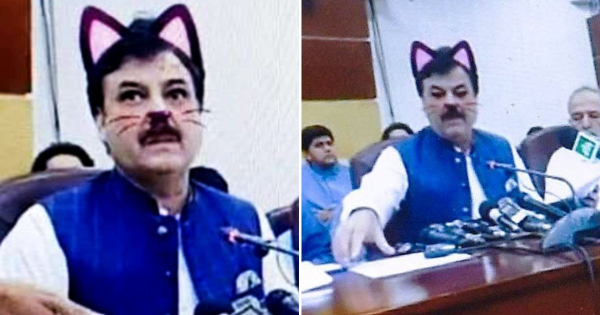 cat6.png?resize=1200,630 - Politician Accidentally Leaves Cat Filter On As He Livestreams Press Conference