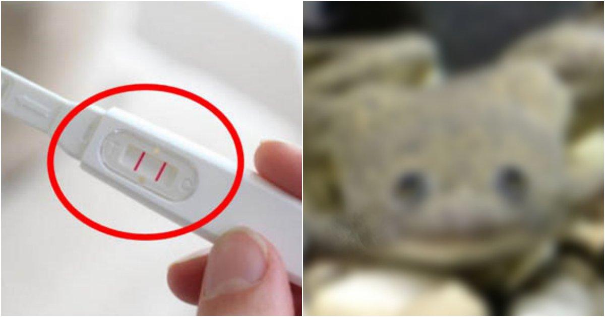 collage 5.png?resize=412,232 - '임신여부를 개구리로 안다고?'.....기상천외 임신테스트기
