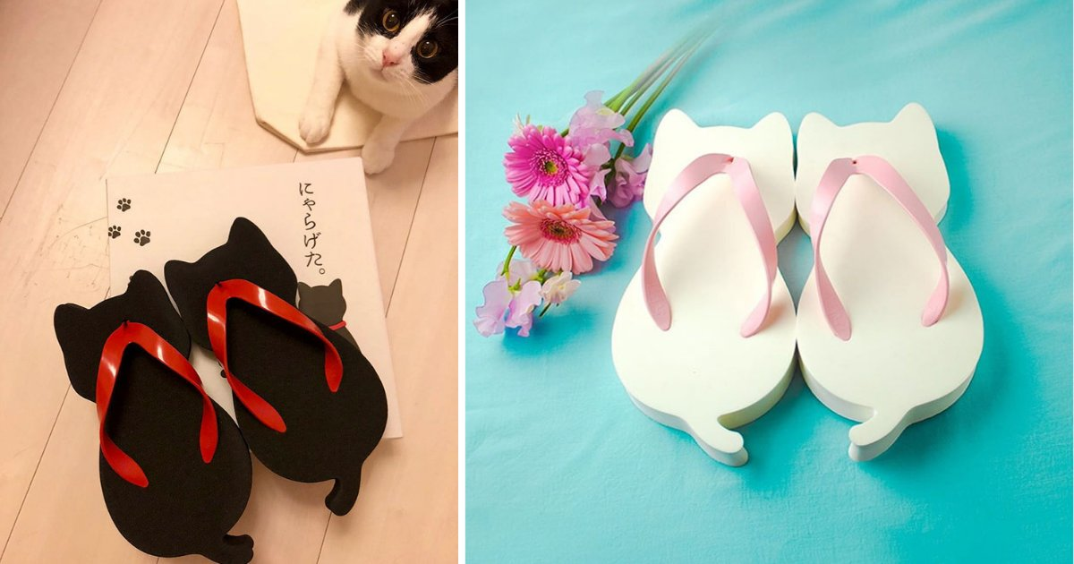 d2 14.png?resize=1200,630 - Japanese Company Created Cat-Shaped Sandals Perfect For Cat Lovers