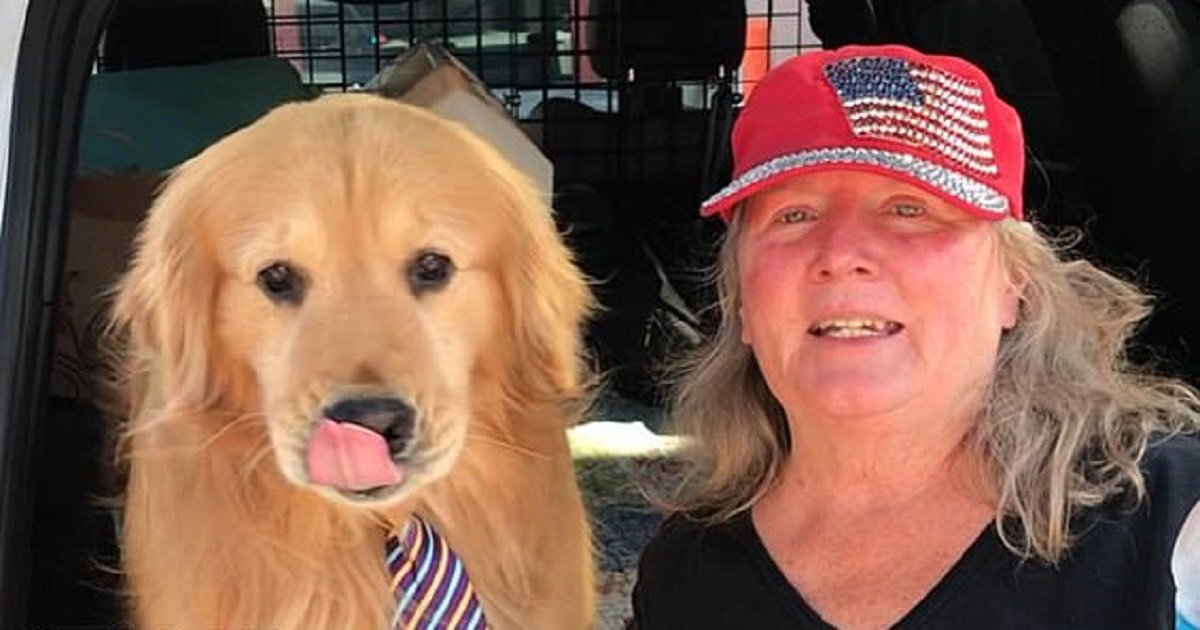 """d3 2.jpg?resize=412,232 - A California Town's Mayor Is An Adorable Golden Retriever Who """"Wants To Make The World A Better Place"""""""