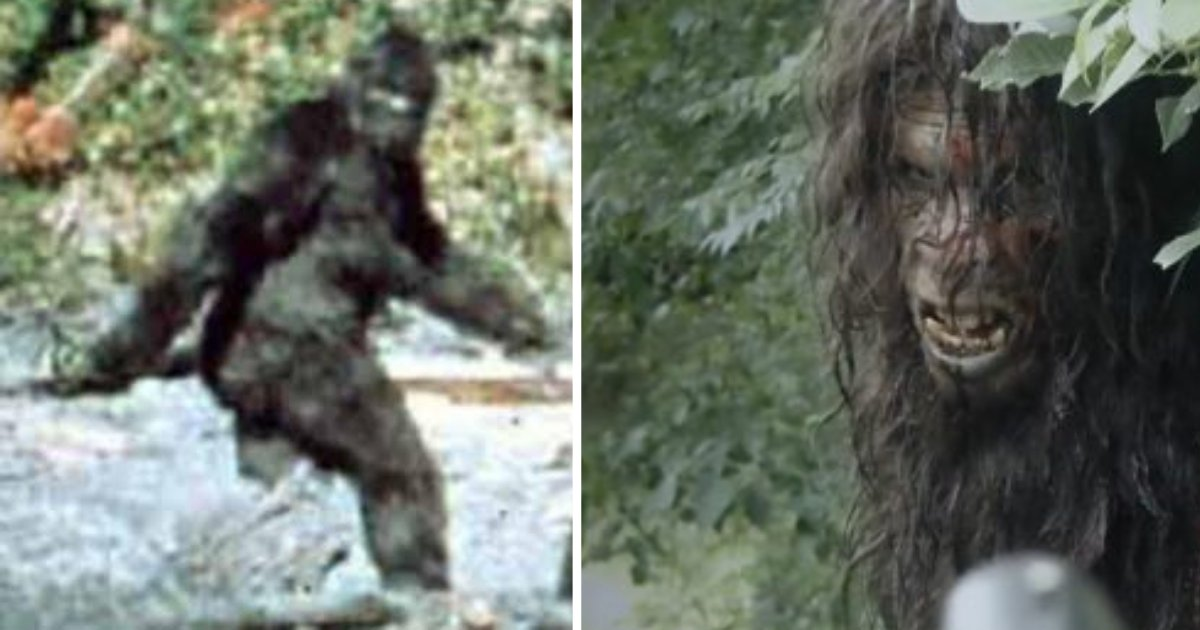 d3 4.png?resize=300,169 - The FBI Releases New Information About the Bigfoot