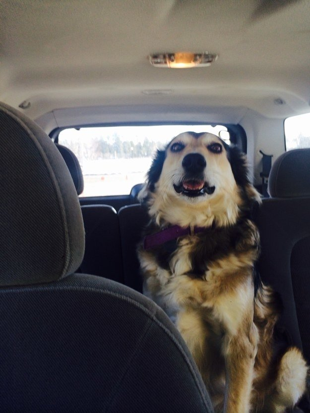 """Mind if I drive? You're really freaking me out."""