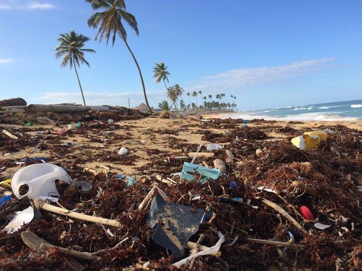 8Países que lehan declarado laguerra alplástico