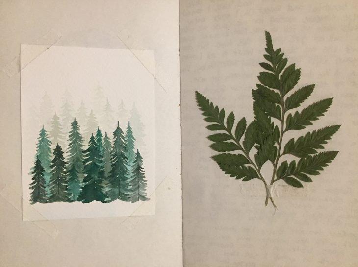 pinos y hoja en diario