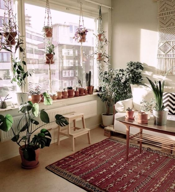 Sala de estar con ventanal grande decorado con plantas de diferentes tipos, mesa de centro, alfombra roja con toques dorados y sillón blanco