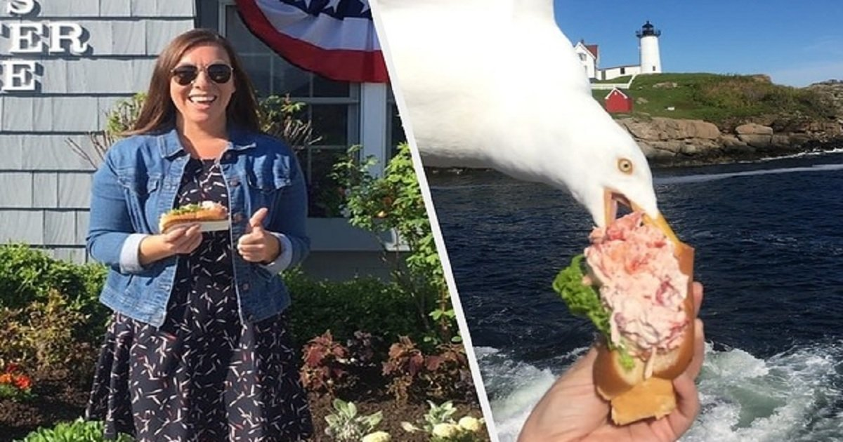 l3.jpg?resize=412,232 - Woman Taking A Scenic Photo With Her $21 Lobster Roll Captured The Perfect Moment Of A Seagull Stealing It