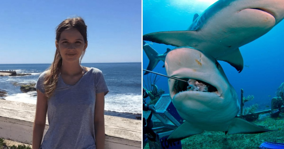 lindsey5.png?resize=412,232 - 21-Year-Old Tourist Passed Away After Encountering Sharks While Snorkeling In Famous Beach