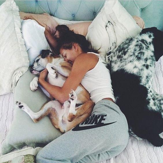 acurrucarte con tu perro