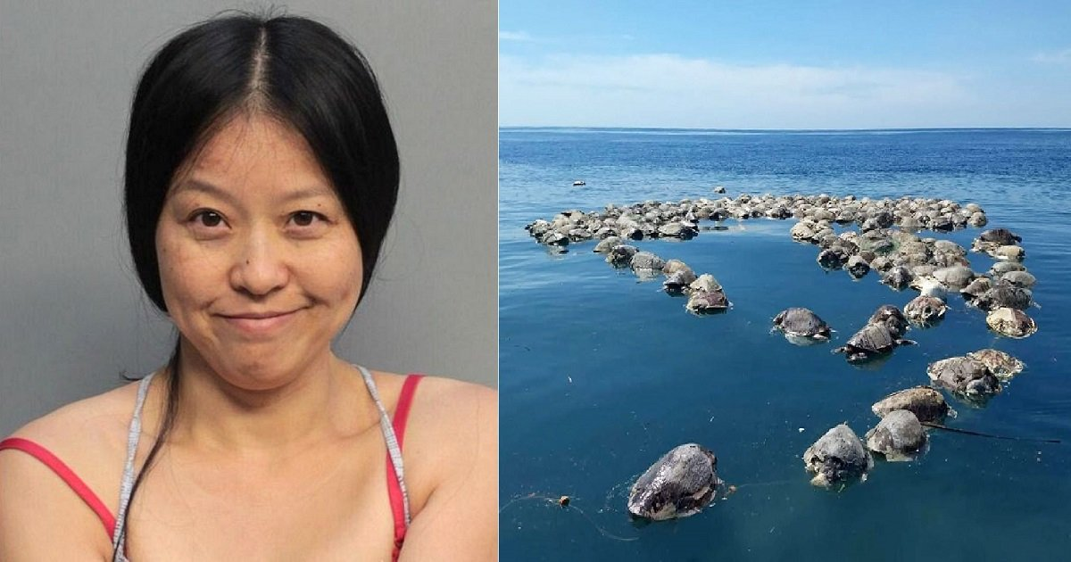 "t3 3.jpg?resize=1200,630 - A Woman Arrested After Witnesses Saw Her ""Stomping All Over"" A Sea Turtle Nest In Florida"