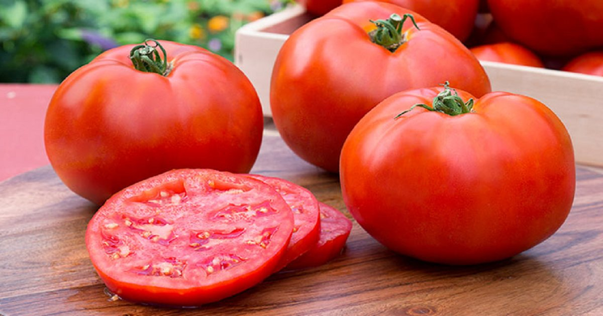 t3.png?resize=412,232 - 6 Health Benefits Of Eating Tomatoes That You Didn't Know
