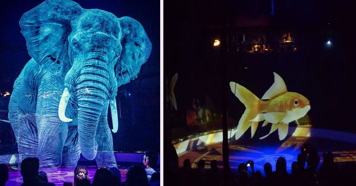 untitled 1 10.jpg?resize=412,232 - German Circus Uses 3D Holograms Instead Of Real Animals For A Cruelty-Free Show