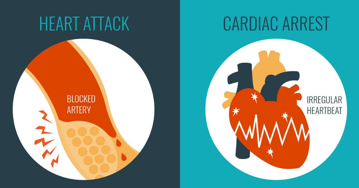 untitled design 1 12.png?resize=412,232 - What Is the Difference Between Cardiac Arrest and Heart Attack? The Ways You Can Deal With Them