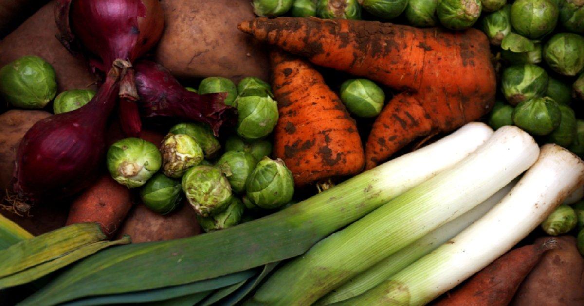 v3.png?resize=412,232 - Un régime végétalien est le meilleur moyen de réduire l'empreinte carbone, selon une étude