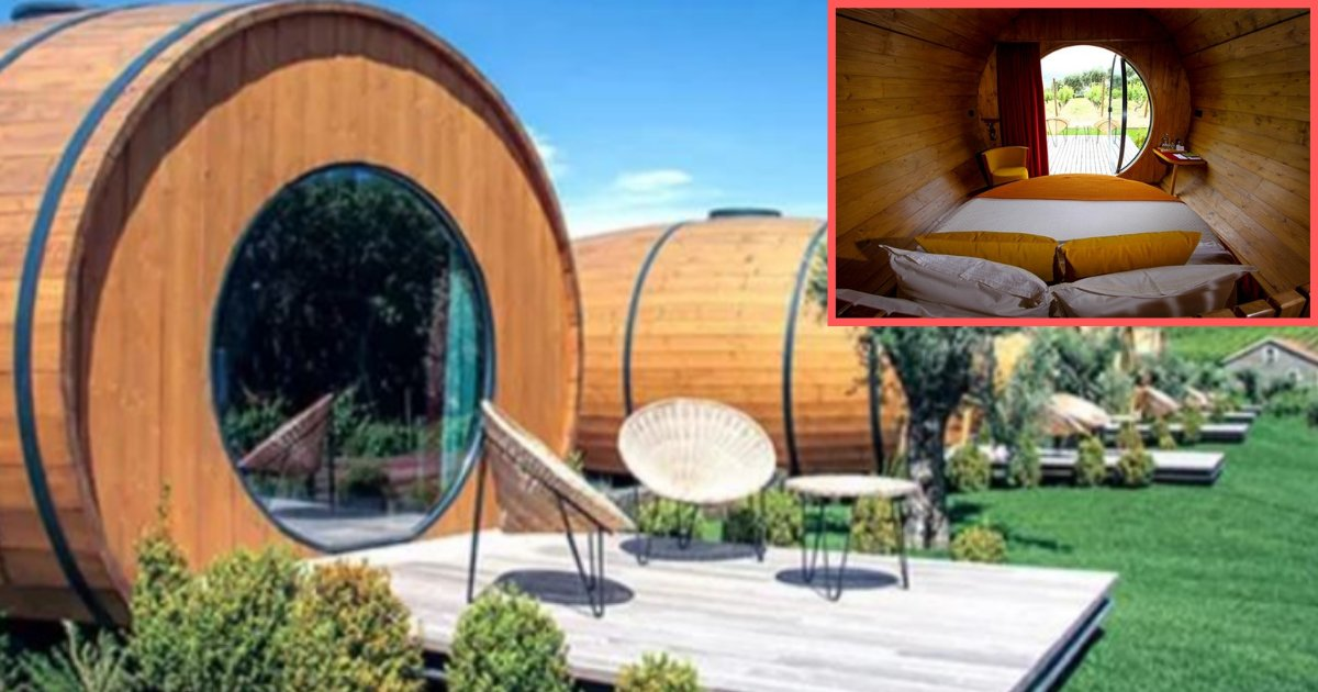 y2 11.png?resize=1200,630 - You Can Now Stay In A Wine Barrel Overnight And Drink Wine All Day In Portugal Resort