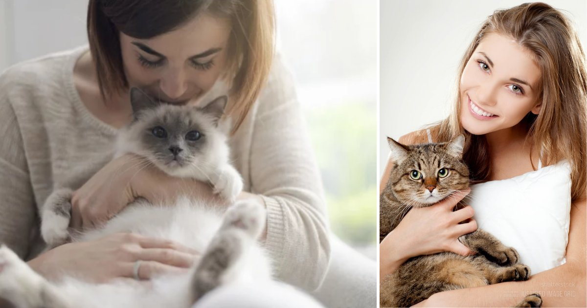 y4 2.png?resize=1200,630 - According to Science, If You Think You are a Cat Lady Then it Can be Great for Your Health