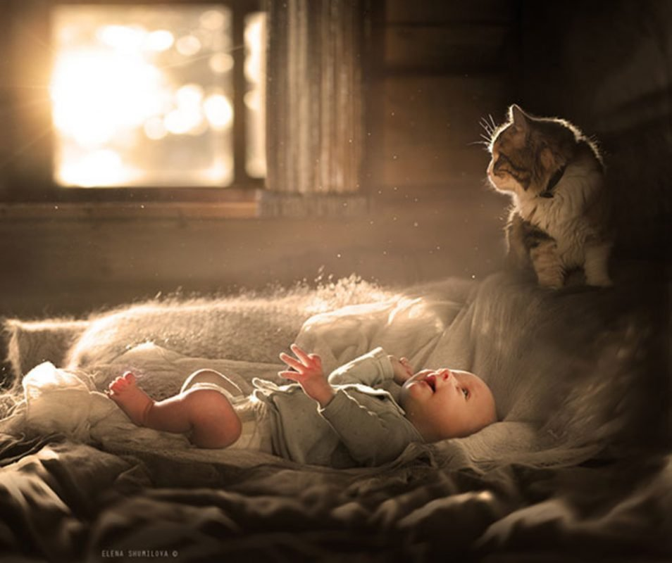 Photo via Elena Shumilova