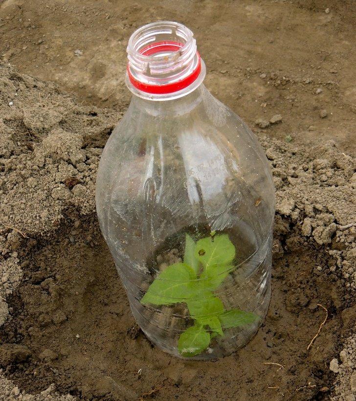 12Maneras dereciclar elplástico por las que elplaneta teagradecerá