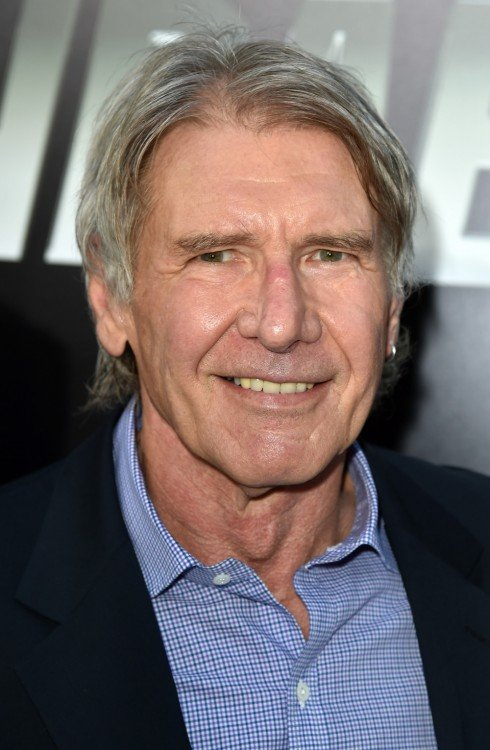 Actor Harrison Ford 2015